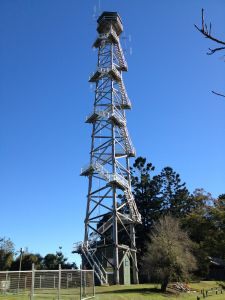 Jimna Fire Tower (2013); Heritage Branch staff