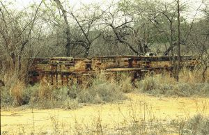 Charters Towers Gold Mine Shafts and Remains (2001); Heritage Branch staff
