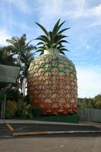 The Big Pineapple (2009); Heritage Branch staff