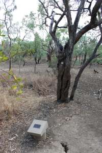 Burke and Wills' Camp B/CXIX and Walker's Camp, Little Bynoe River (2010); EHP