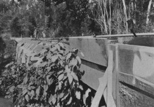 602257 - Collingwood Water Race-Sluice Boxes Jones Creek (1915); QGMJ