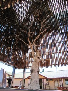 Tree of Knowledge (2011); Vic Bushing