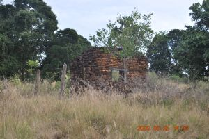 Cotswold Cottage ruins (2009); Heritage Branch staff