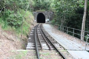 Cairns Railway, Section from Redlynch to Crooked Creek Bridge, Bridge timber and tunnel 10 (2011); Heritage Branch staff